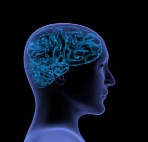 organic brain injury disability lawyer