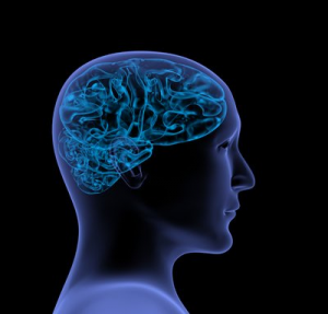 Organic Brain Injury and Your Long Term Disability Claim